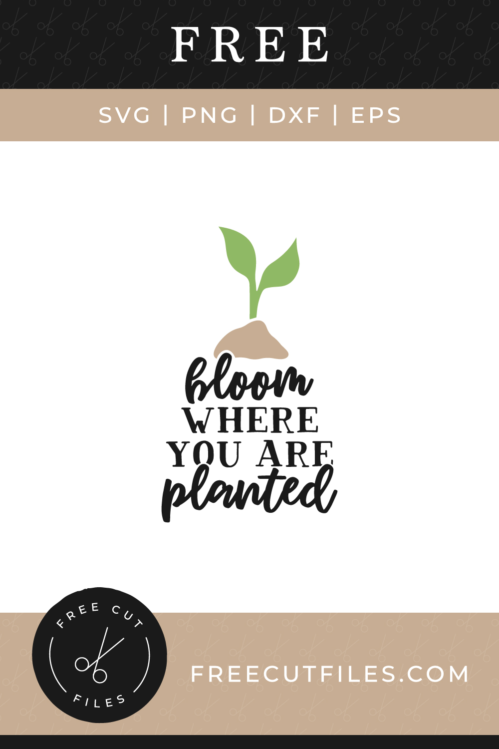 Bloom where you are planted Free SVG cut file